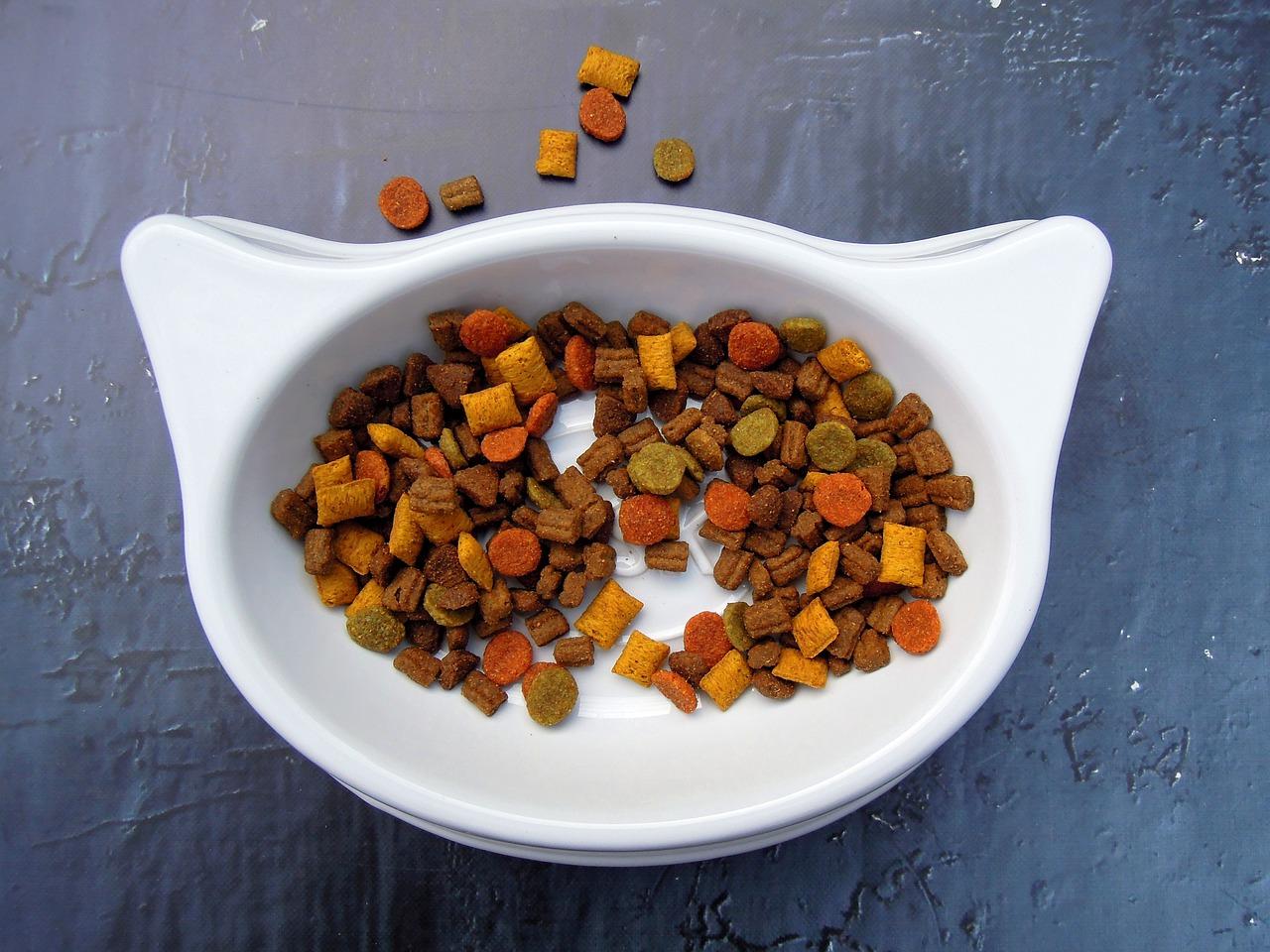 Як приготувати сухий корм для собак та котів своїми руками