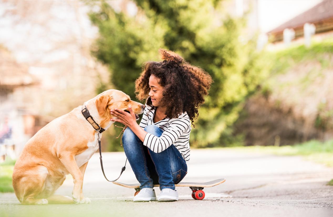 8 причин, чому вам варто завести собаку