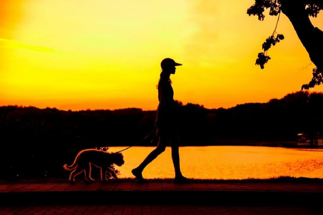 Важливі причини, чому вам потрібні вечірні прогулянки