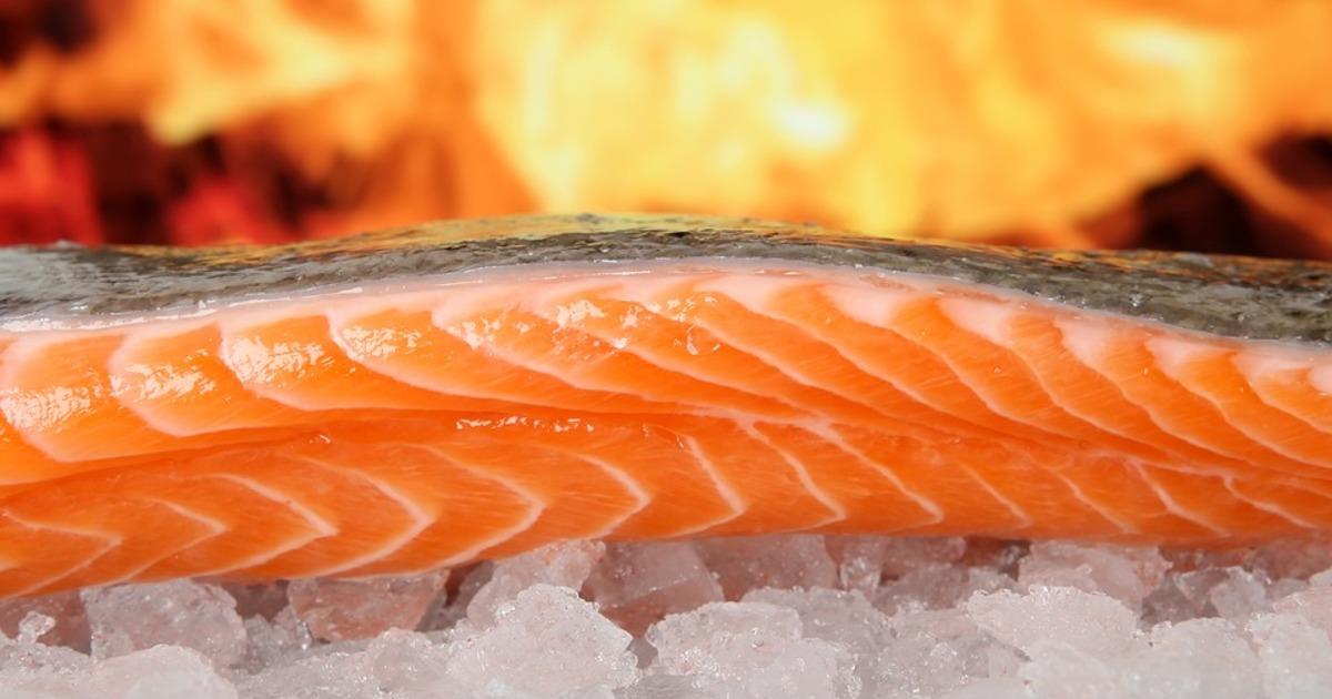 Спалювання жиру: чи можна їсти сирою лосось або краще готувати рибу