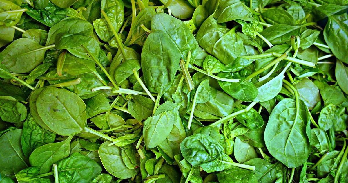 Топ-8 джерел рослинного білка, які рекомендує тренер
