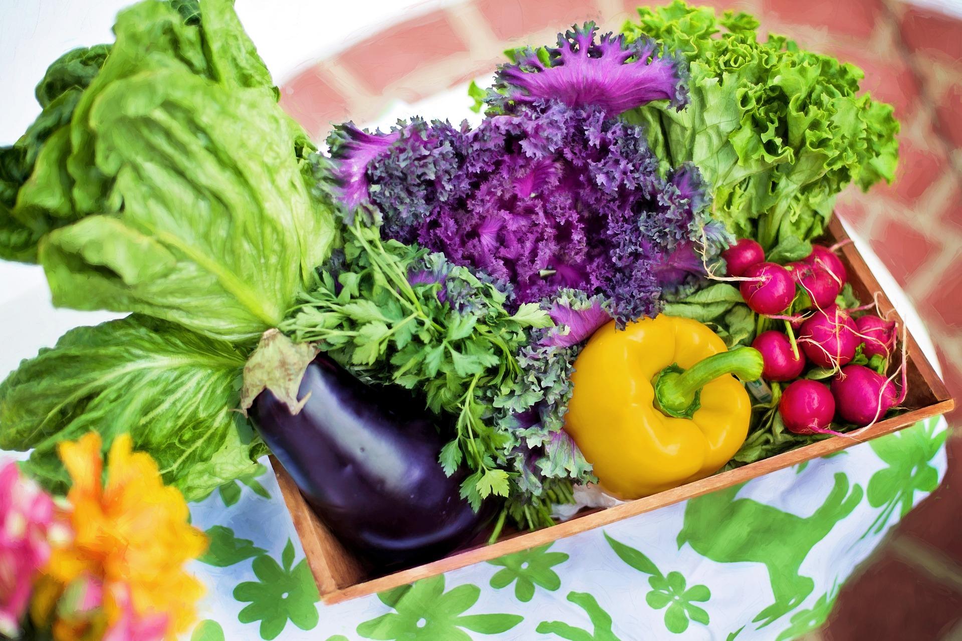 Чому овочі настільки необхідні прийняв правильне харчування