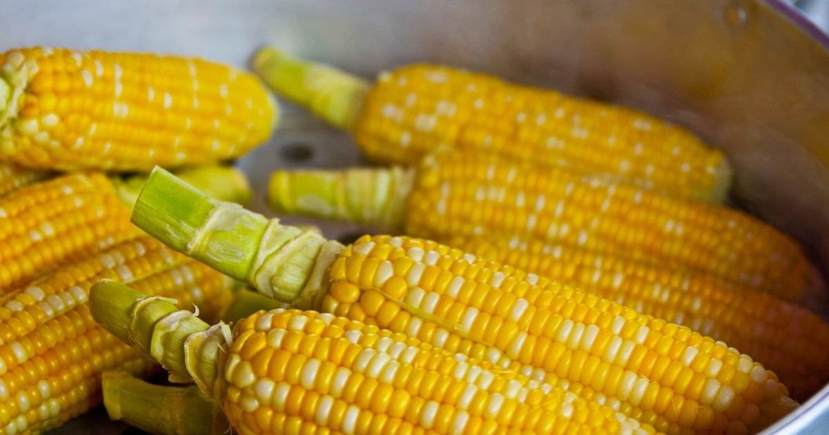 4 рецепти з кукурудзою, які ви зобов'язані спробувати в серпні