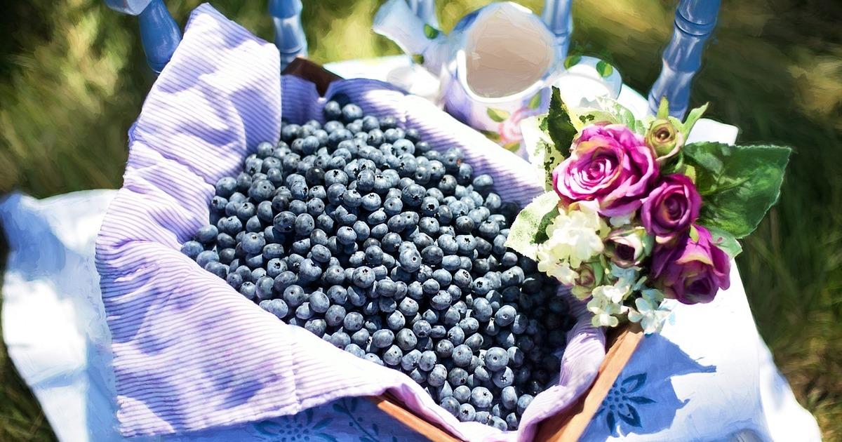 9 сезонних продуктів, якими варто харчуватися в липні
