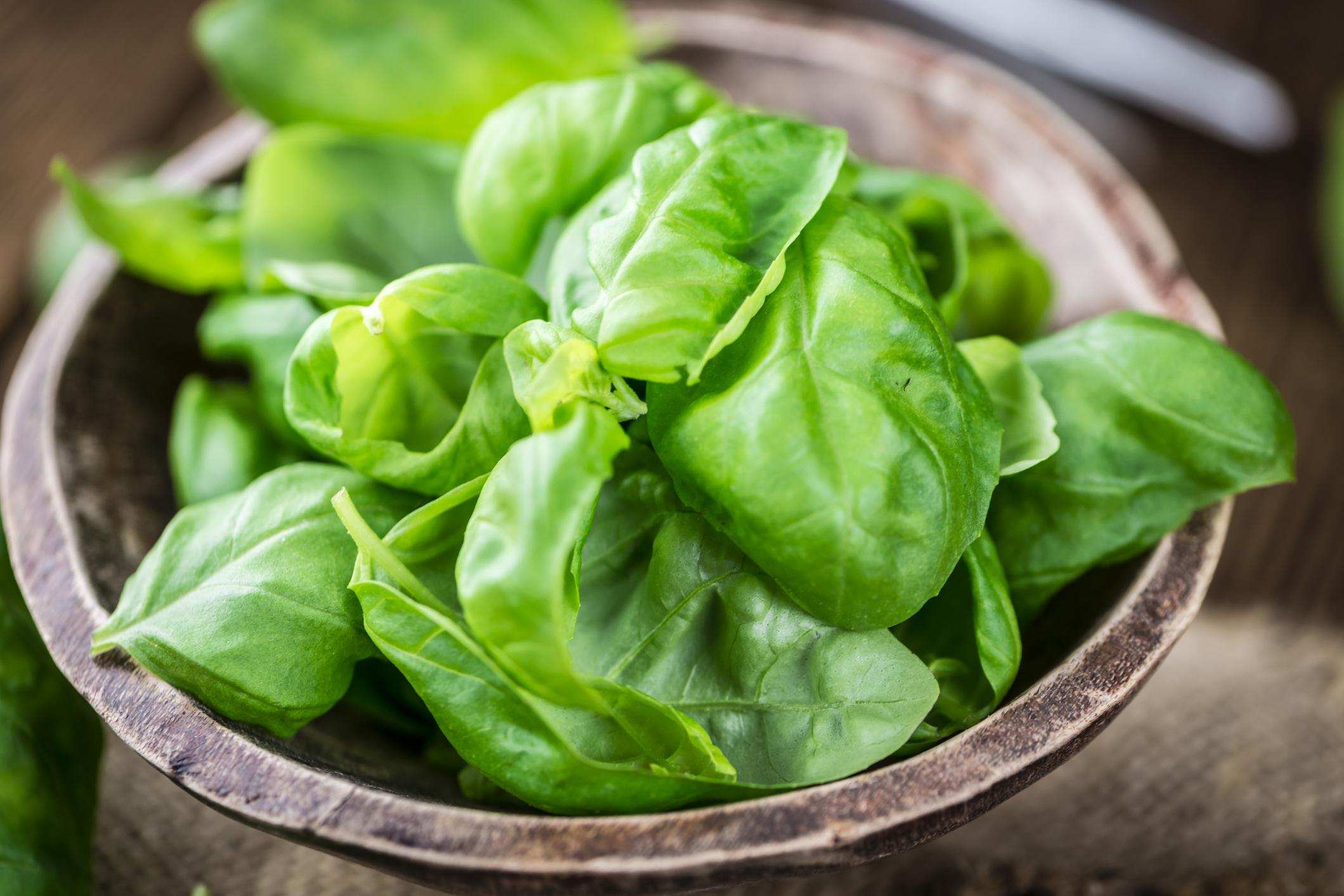 14 корисних зелених овочів, які повинні бути головними в меню